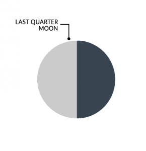 Moon Phases Last Quarter Moon