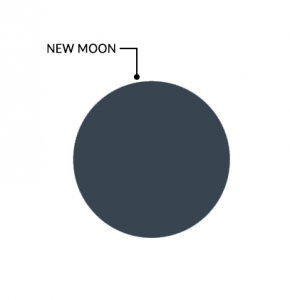 Moon Phases New Moon