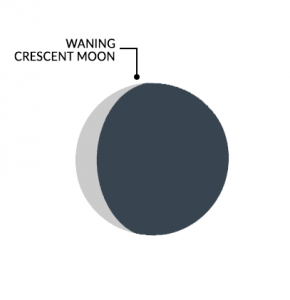 Moon Phases Waning Crescent Moon