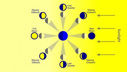 New Full Half Waxing Waning Crescent Gibbous Moon