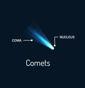 Comet Anatomy