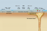 Earth Crust: Oceanic Crust vs Continental Crust