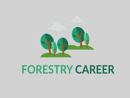 Forestry Career: What Do Foresters Do?