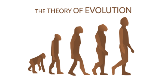Theory of Evolution March of Progress