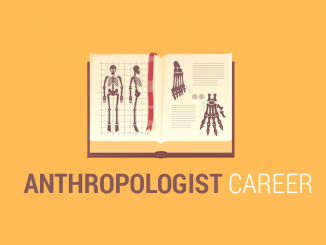 How Anthropologist Careers Manage and Preserve Cultural Resources