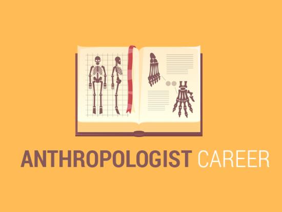 Anthropologist Career