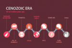 The Cenozoic Era: From Dinosaur Extinction to Human Evolution