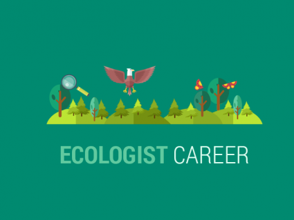 Ecology Careers: What Do Ecologist Do?