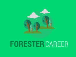 Forester Career