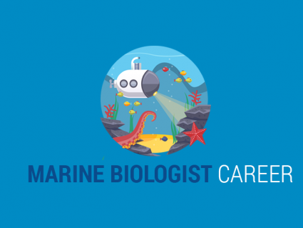 Marine Biologist Career: What Do Marine Biologists Do?