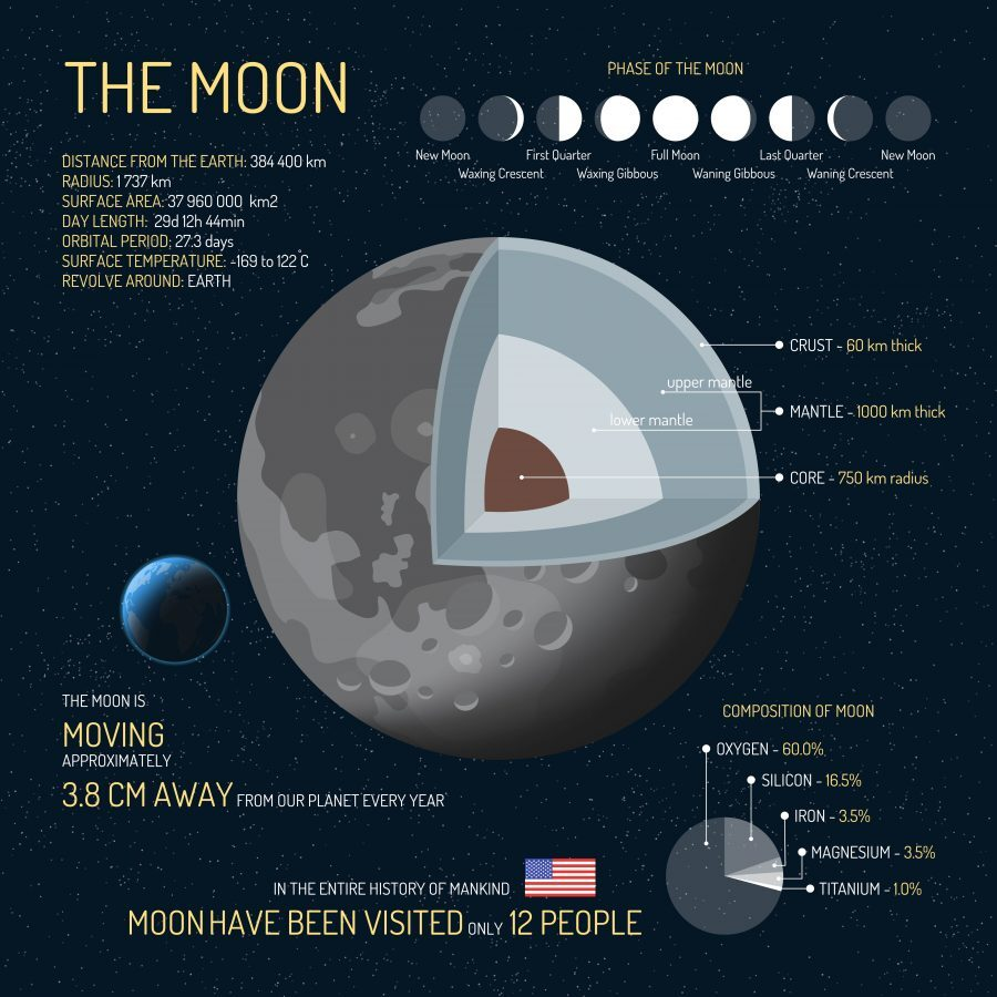 The Moon Infographic