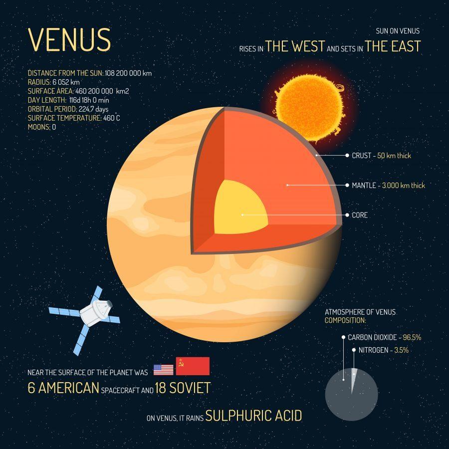 Venus Infographic