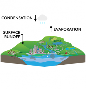 Water Cycle Evaporation Precipitation