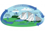 What is the Hydrologic Cycle? 3 Steps of the Water Cycle