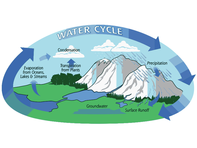 Water Cycle: What Is The Hydrologic Cycle: 3 Steps Of The Water Cycle