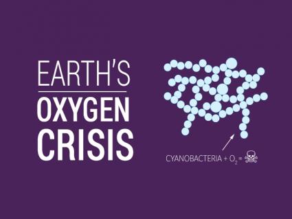 Oxygen Crisis Cyanobacteria