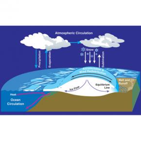 Climate Feedback Loops
