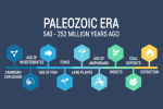 Paleozoic Era: Diversification of Life (540 to 252 million years ago)