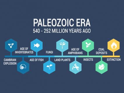 Paleozoic Era: Diversification of Life (540 to 252 million years ago)