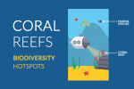 Coral Reef Facts: Ocean Biodiversity Hotspots