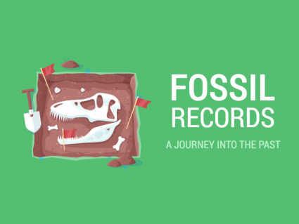 Fossil Records: A Journey into the Past