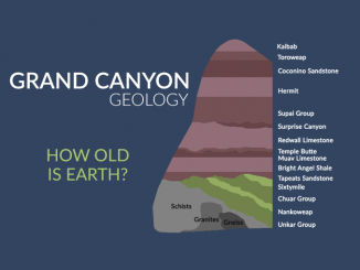 GRAND CANYON GEOLOGY: Rock Layers and Stratigraphy
