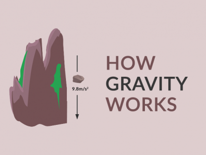 How Gravity Sculpted the Earth