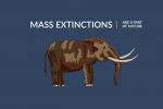 Mass Extinctions: The 5 Biggest Dying Events in History