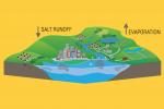 Ocean Salinity: How Much Salt is in Oceans?