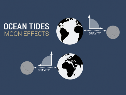 What Causes Ocean Tides?