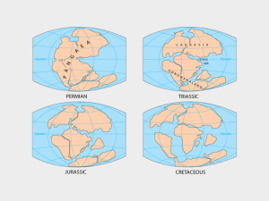 What Is Pangaea? Piecing Together the Supercontinent Jigsaw Puzzle