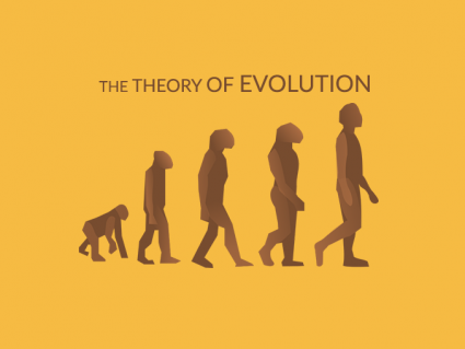 Theory of Evolution: Charles Darwin and Natural Selection