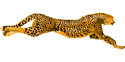 Earth Speed Cheetah