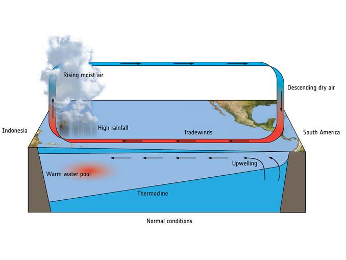 El Nino Normal Conditions
